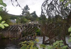 schottland_2017-4-island-magic-tour-tag-7_0488